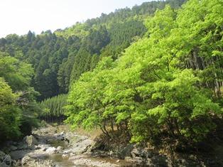 清滝川.jpg